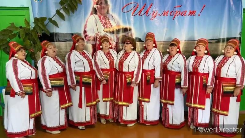 Эрзяночка Лукояновский район 2