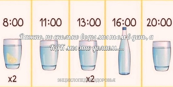 Важно, не сколько воды мы пьем в день, а КАК мы это делаем....