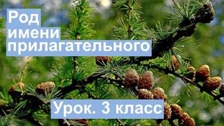 Урок. Род имени прилагательного. Русский язык 3 класс. #учусьсам