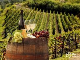 Вино Королей- Король Вин, изображение №2
